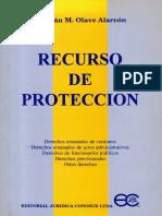 Recurso de Proteccion Cristian Olave Alarcon