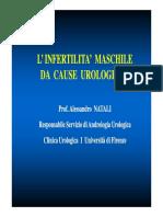 8. Infertilità Maschile (Natali)