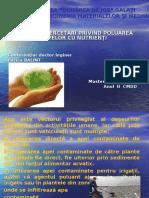Studii Si Cercetari Privind Poluarea Cu Nutrienti
