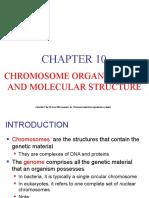 Prokaryotic and Ceukaryotic Chromosomes