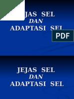 JEJAS