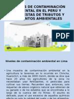 Fuentes de Contaminación Ambiental en El Perú y