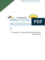 PRACTICAS PREPROFESIONALES 2