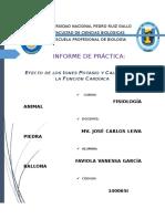 Informe Animal
