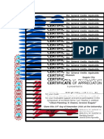 Certificate Palafox Inter