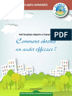 Guide Comment Audit Efficace