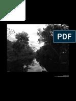 Espacios, campesinos y subjetividades ambientales en el Guaviare.pdf