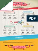 Infografico Como o Cerebro Processa