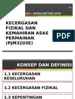 PJM3203E - AVRALINETINE EPIN