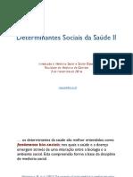 DETERMINANTES SOCIAIS DA SAÚDE