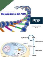 Seminario Metabolismo ADN 2016