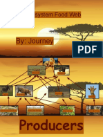 savanna ecosystem food web