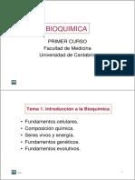 Tema1_introduccion.pdf