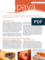 10-129 - cs22-papaya-web (1)