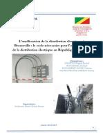 DESS CONGO Amelioration Rapport - Copie