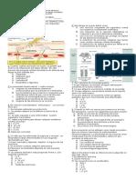 Evaluacion Sistema Inmune Noveno