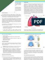 seccion7.pdf