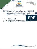 Lineamientos Para La Operatividad de Los Cuerpos Colegiados
