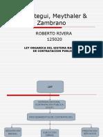 contratacionpublica-100701101852-phpapp01