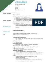 curriculum-diseñador-web