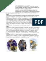 54034404-Antecedentes-historicos-de-la-geografia.docx
