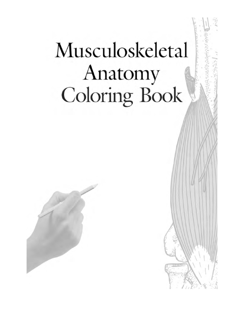 Musculoskeletal anatomy coloring bookpdf foot hip fandeluxe Choice Image