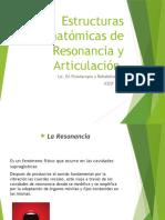 Estructuras Anatómicas de Resonancia y Articulación