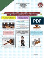 INFOGRAFÍA DE LOS PRINCIPIOS GENERALES DEL DERECHO ADMINISTRATIVO EN VENEZUELA