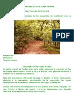 DESARROLLO DE LA CALMA MENTAL.docx