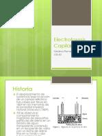 Electroforesis Capilar (1) (2)