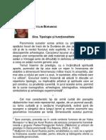 Borangic C. - Sica. Tipologie Si Functional It Ate, NEMVS, IV, 7-8, 2009