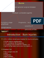 Arsuri burns ENG.ppt