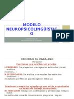 Modelo Neuropsicolinguistico