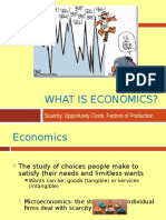 whatiseconomics-091208231557-phpapp01