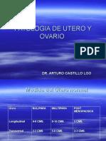 Utero Patologico Ultra 2