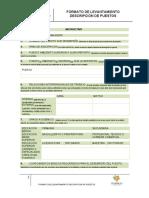 Instructivo Levantamiento de Informacion de Perfil Lfkdlfdf