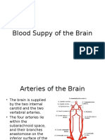 Blood Suppy to the Brain