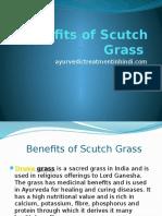 Benefits of Scutch Grass