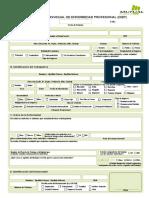DIEP.pdf