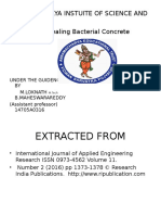 self healing Bacterial Concrete