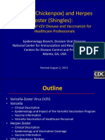 vzv_clinical_slideset_jul2010.pdf