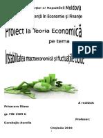 Instabilitatea economica