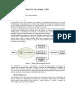 Programa - Disciplina Cominuiçao e Classificaçao