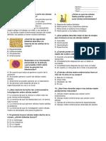 Brainpop Cuestionario Células Madres