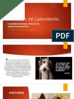 Consideraciones Éticas en Experimentación Con Animales