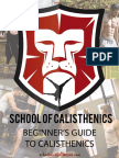 A-Beginners-Guide-To-Calisthenics-1.pdf