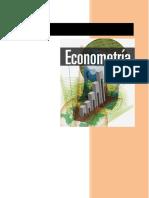 Definiciones de Econometria