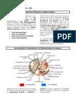 3-vias-espinales_m11w.doc