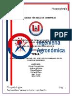 Ejemplo de Informe Correctamente Extructurado (2)