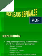 3era-Reflejos espinales
